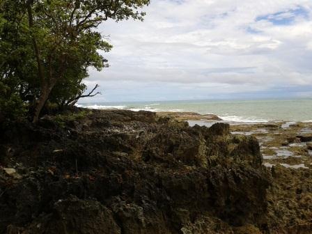 Pulo Manuk
