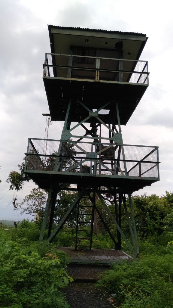 Menara Pandang Baluran